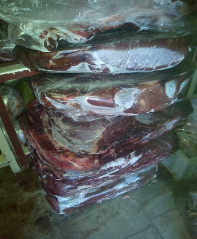 Продам Печень говяжья