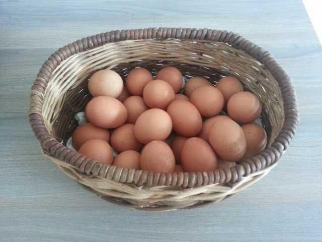 Продам Яйцо куриное деревенское крупное