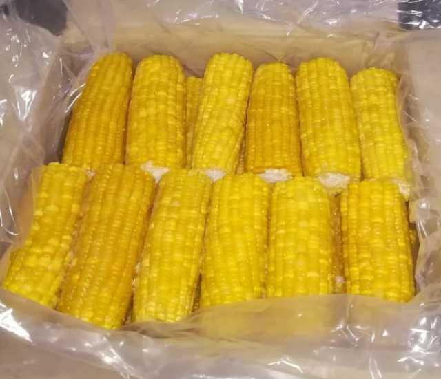Продам Кукуруза с/м. ИНДИЯ (сладкая в початках)