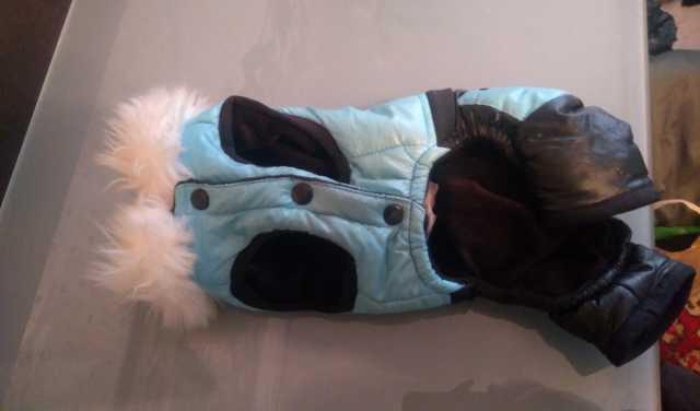 Продам Одежда для собак комбинезон на Йорка