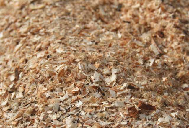 Продам: Опилки лиственных пород деревьев