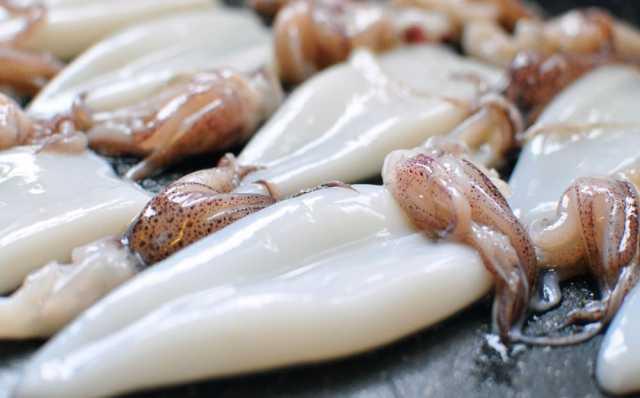Куплю кальмары с подходящим сроком годности