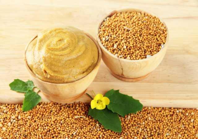 Продам Семена горчицы сарептской Ника