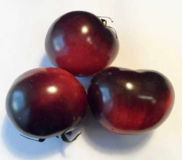Продам Антоциановые томаты сайт скороспелка.рф