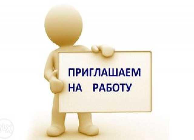 Требуется: Временный директор / регистратор