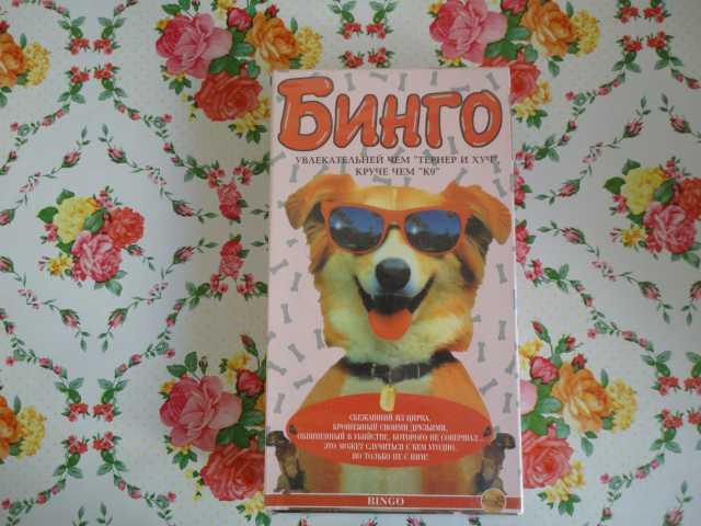 Продам Видеокассета Бинго
