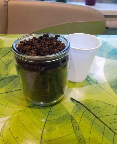 Продам Иван-чай (копорский чай)