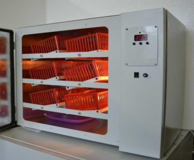 Продам Домашний инкубатор на 120 куриных яиц ИП