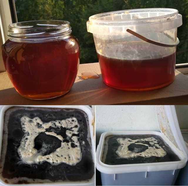 Продам Мёд разнотравье Алтайский вкусный 2019г