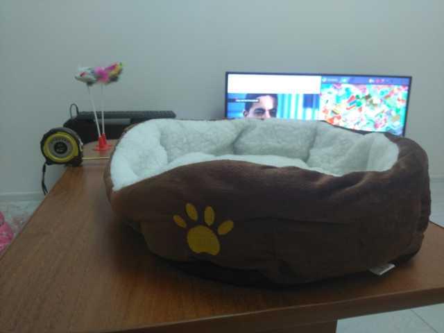 Продам: Лежаки для котов и кошек