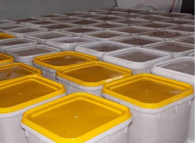 Продам: Мёд оптом напрямую со своей пасеки