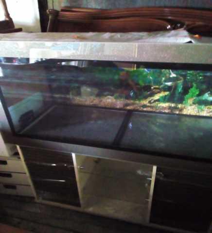 Продам аквариум 330 литров с красивой тумбой