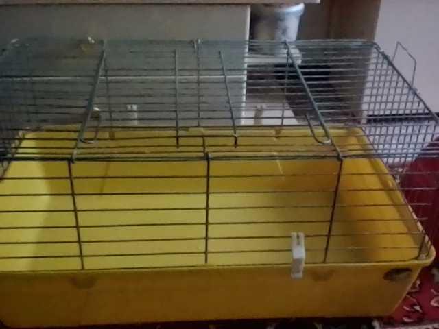 Продам клетка для грызунов