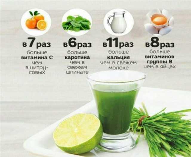 Продам: Целебный сок WheatGrass для похудения и