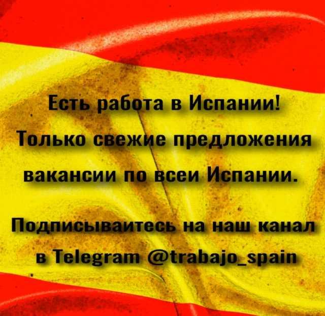 Вакансия: Работа в Испании