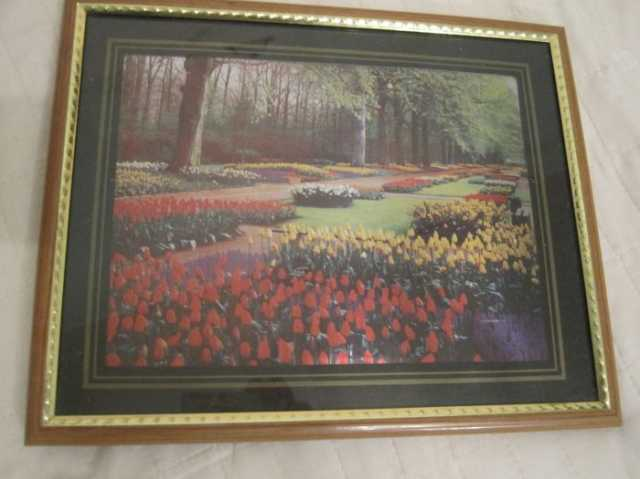 Продам КАРТИНА тюльпаны в рамке 26x21 см