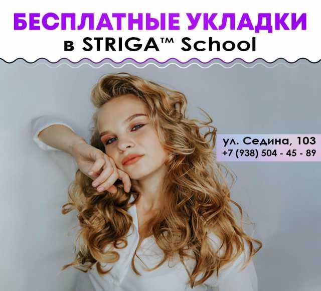 Предложение: Окрашивание и укладки в STRIGA™ School