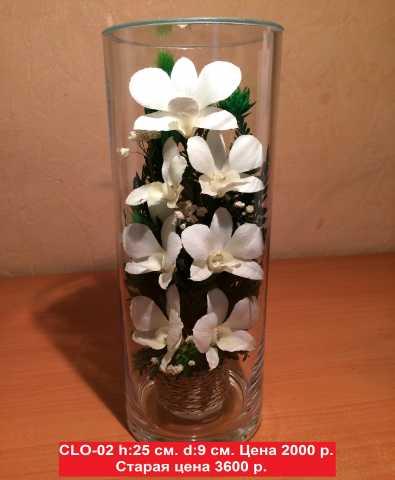 """Продам Натуральные цветы в стекле, в """"вакууме"""""""