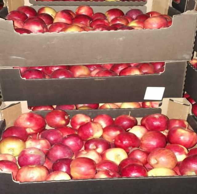 Яблоки Для Похудения Сорт. Яблоки для похудения