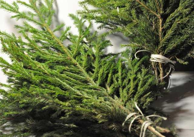 Продам: Лапник пихтовый новогодний ветки