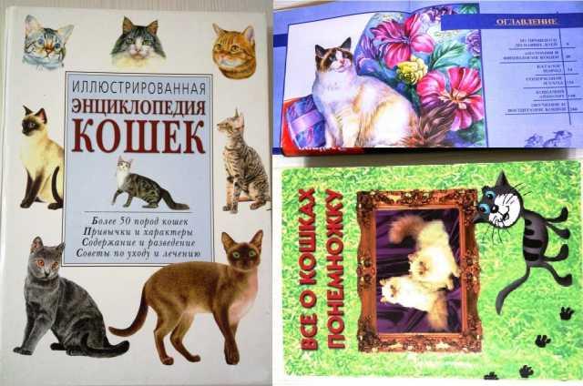Продам Энциклопедиия кошек 2 разных книги
