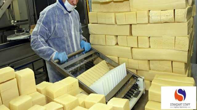 Требуется: Упаковщики сыра на производство