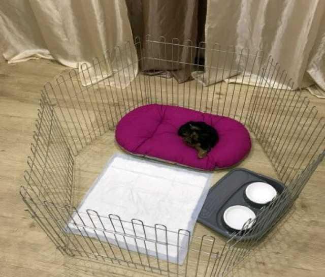 Продам: Вольер для щенка, маленькой собачки