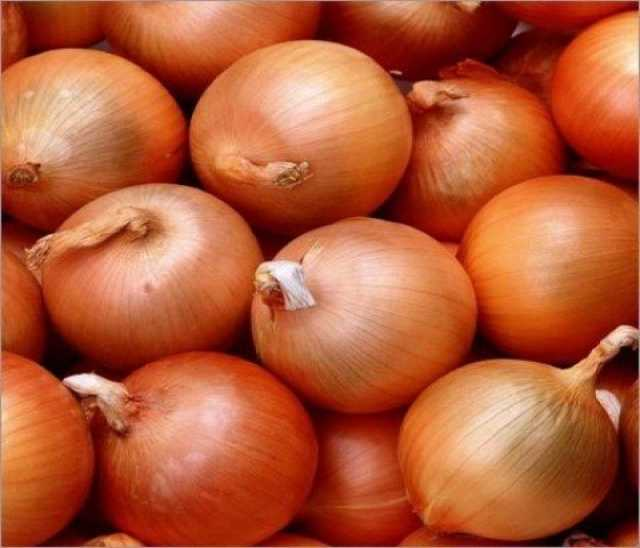 Продам Овощи с отсрочкой платежа