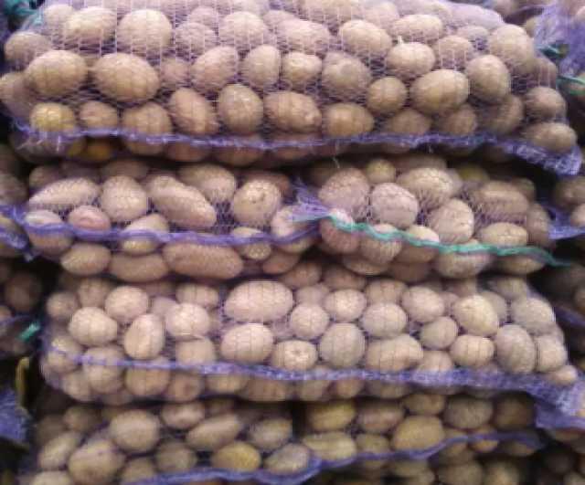 Продам Картофель оптом со склада фермерского хо
