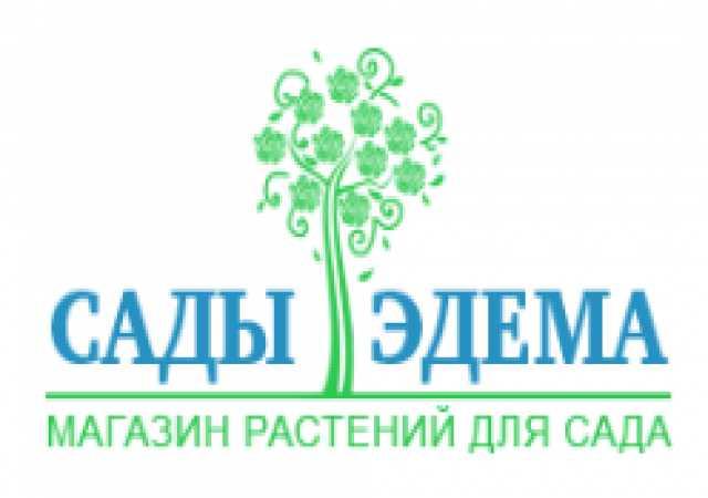 Продам: саженцы растений