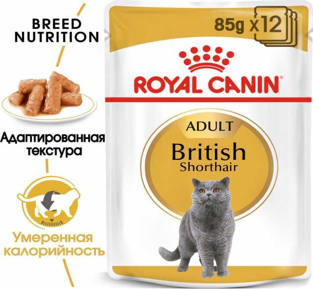 Продам: Консервы Royal Canin British Shorthair