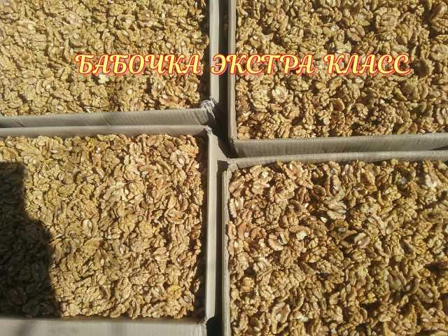Продам: орехи грецкие
