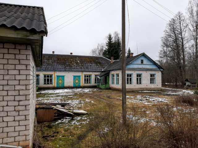 Продам: Жилое здание в деревне, 1 Га. земли