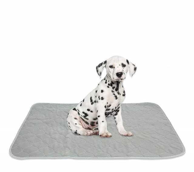 Продам Многоразовые пеленки для животных