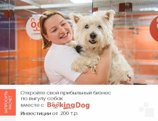 Вакансия: Прибыльный бизнес - выгул собак с Bookin