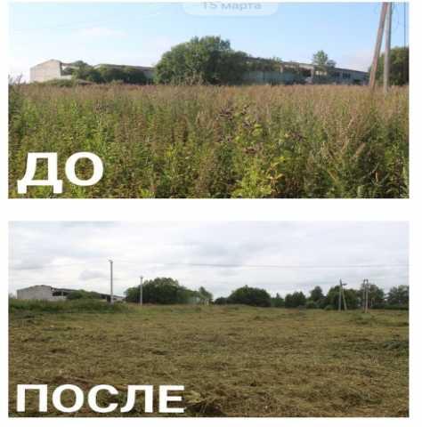 Предложение: Покос травы, расчистка заросших участков
