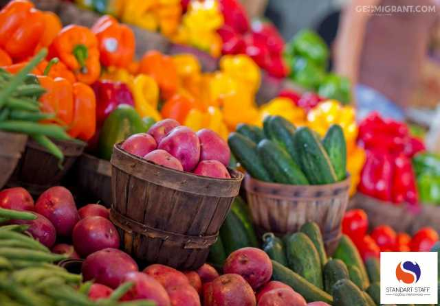 Вакансия: Упаковщики овощей