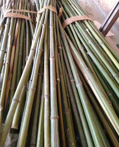 Продам: Опора для растений бамбук