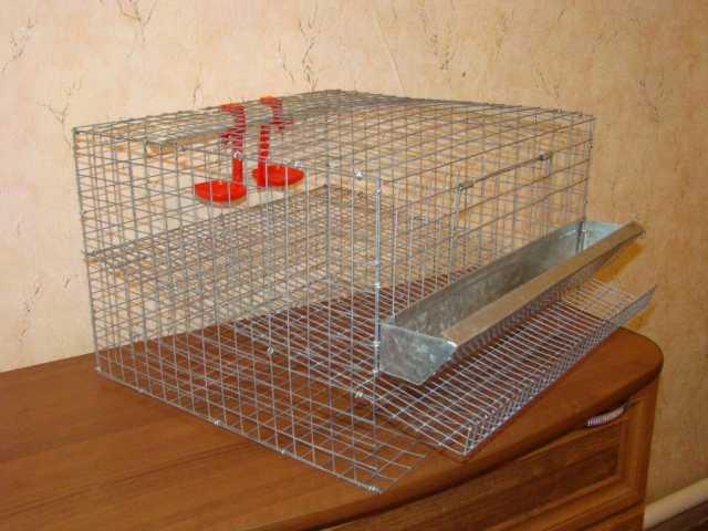 Продам: клетки для перепелов