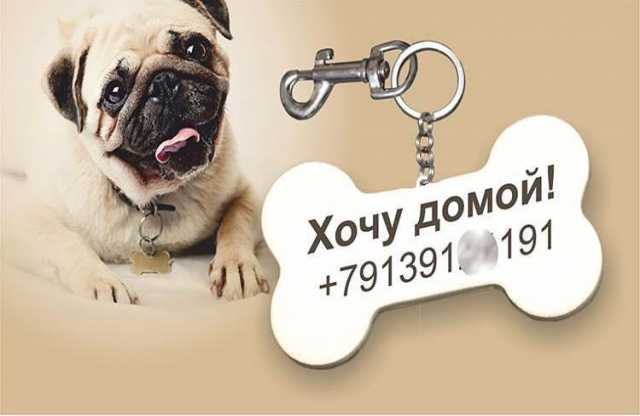 Продам: Адресник (косточка) для собак в Губине
