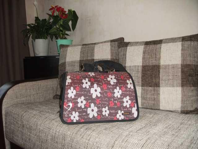 Продам: Текстильная раскладная сумка-переноска