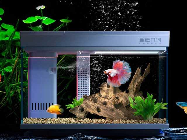 Продам: Умный аквариум Descriptive Geometry Smar