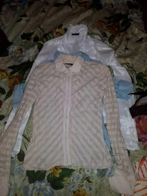 Продам: Блузки -рубашки 5 шт. любая