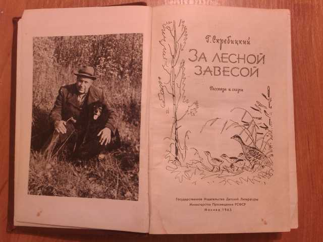 Продам: Скребицкий Г.А. За лесной завесой 1963г
