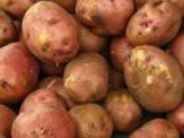 Продам: Картофель деревенский