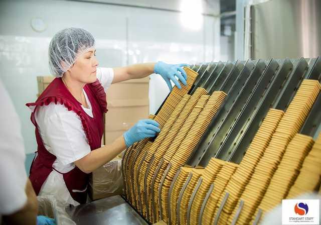 Ищу работу: Маркировщики печенья ( вахта )