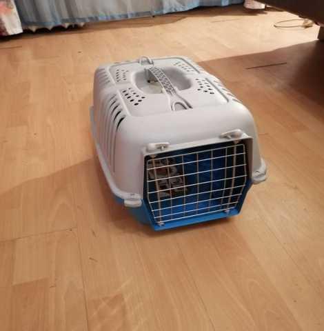 Продам: переноску для кошек и собак контейнер