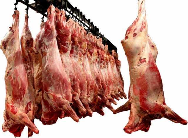 Продам: Мясо говядины, птицы, баранины, свинины