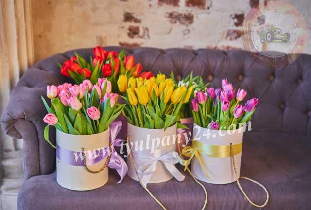 Продам: Тюльпаны и мимоза оптом