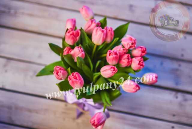 Продам: Тюльпаны оптом Омск (45-70см) и мимоза